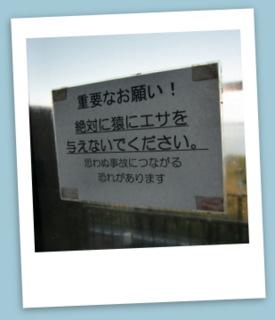 神崎温泉①.JPG